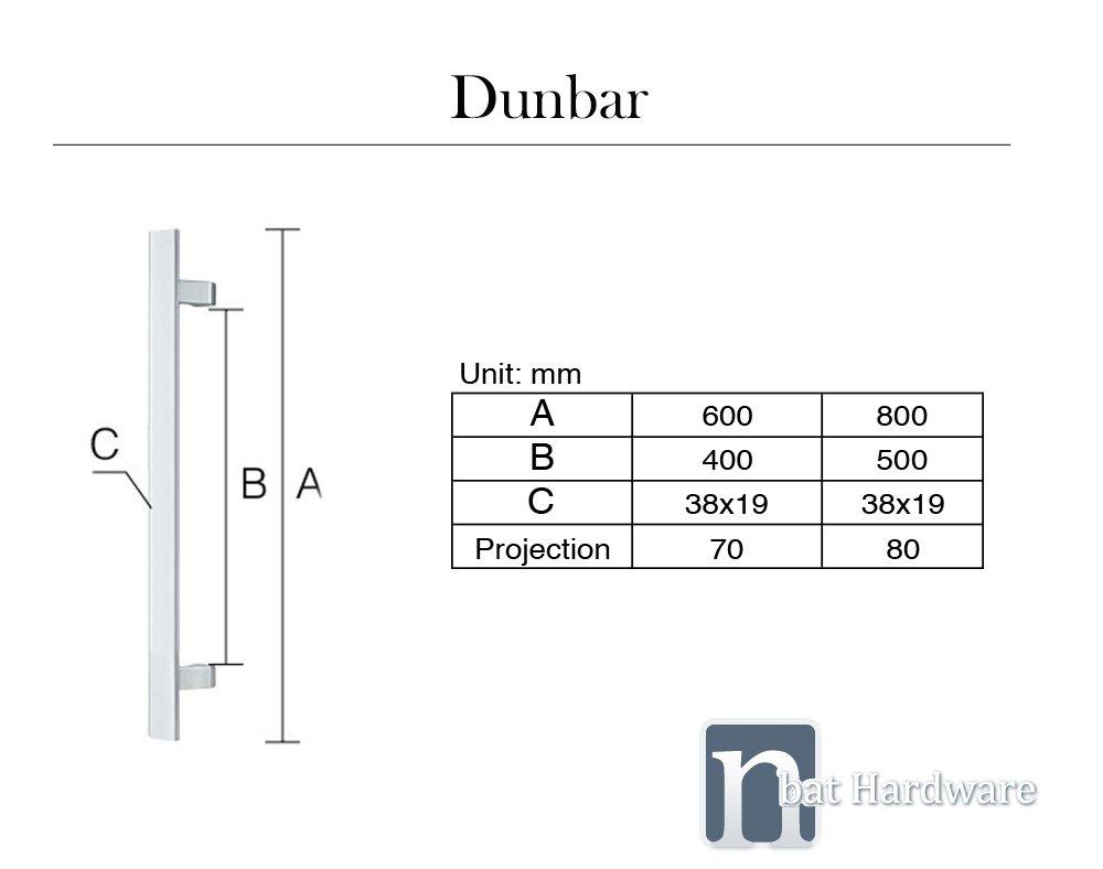 Dunbar entry door pull handle